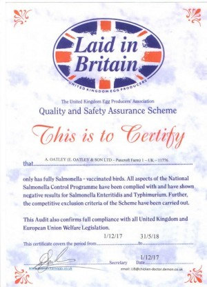 LAID IN BRITAIN CERT DEC 1ST 17